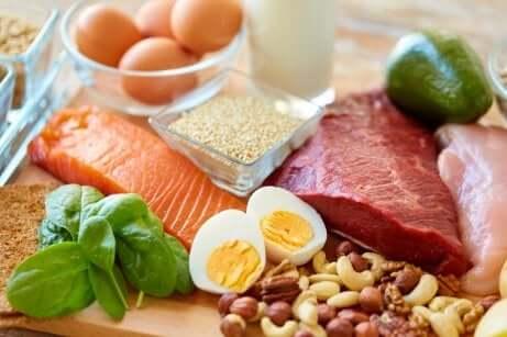 Alimenti proteici da inserire nella dieta povera di carboidrati.