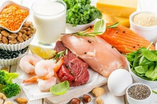 Tipi di proteine e funzioni nell'organismo