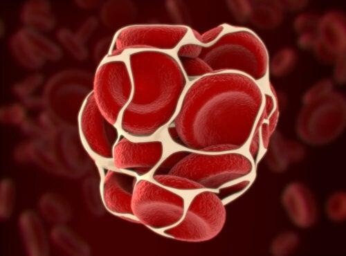 Coagulazione del sangue.