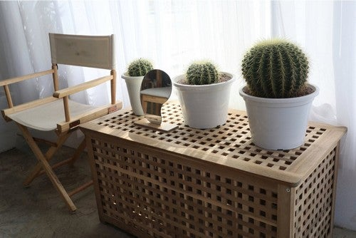 Elementi decorativi con le piante.