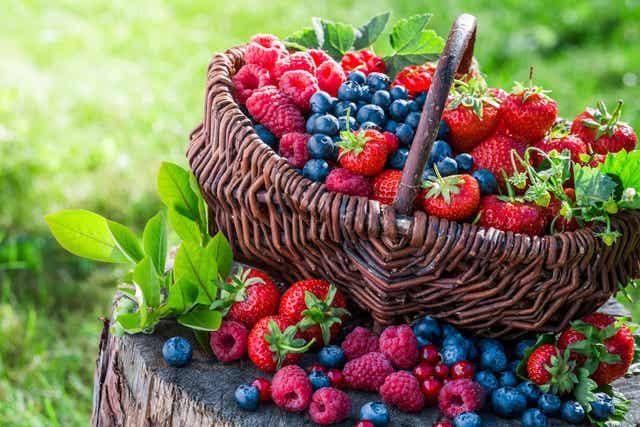 Frutti rossi per proteggere la pelle dai danni del sole