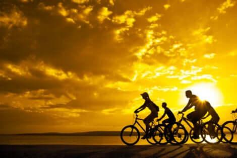 Persone in bicicletta al tramonto.