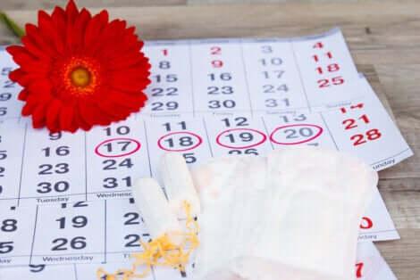 Calendario mestruale.