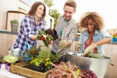 Poliamore: ragazzo pratica giardinaggio con due ragazze.