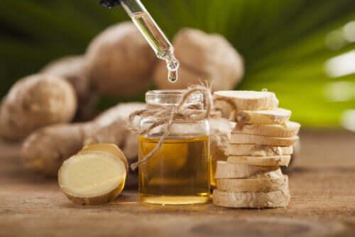 Olio essenziale di zenzero: preparazione e benefici