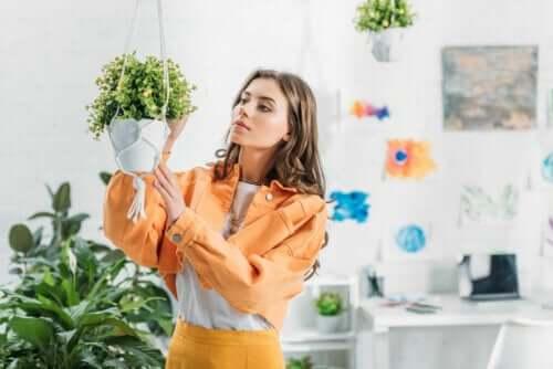 Realizzare un vaso pensile per le piante