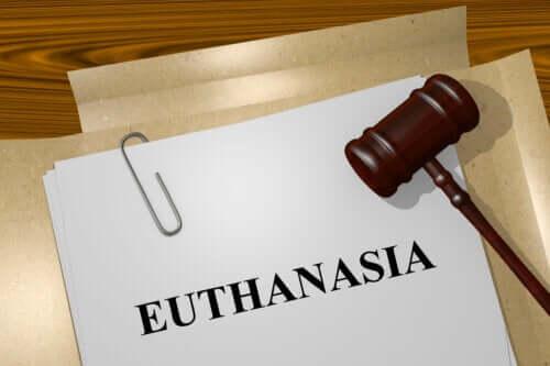 Tipi di eutanasia: cosa bisogna sapere