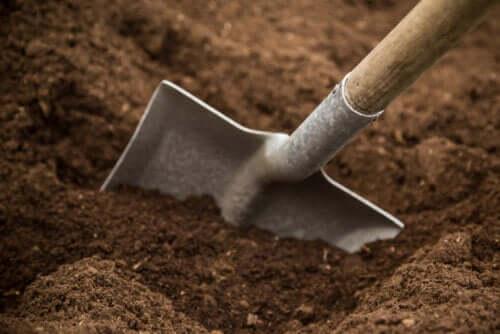 Tipi di terreno e consigli per la coltivazione