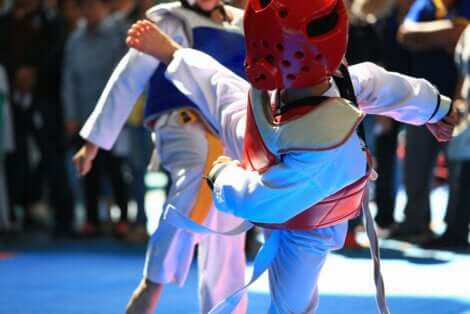 Due combattenti di taekwondo.
