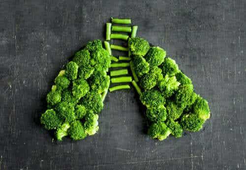 Infiammazione polmonare: consigli alimentari
