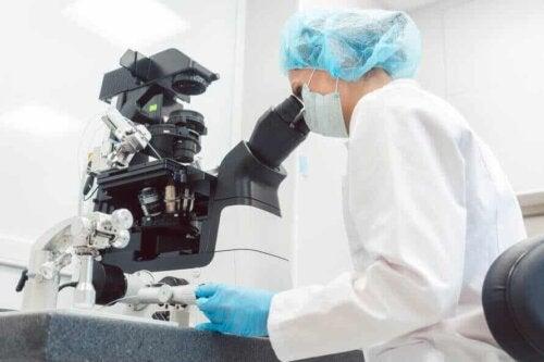 Analisi al microscopio.