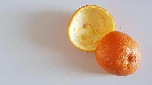 Bucce di arancia.