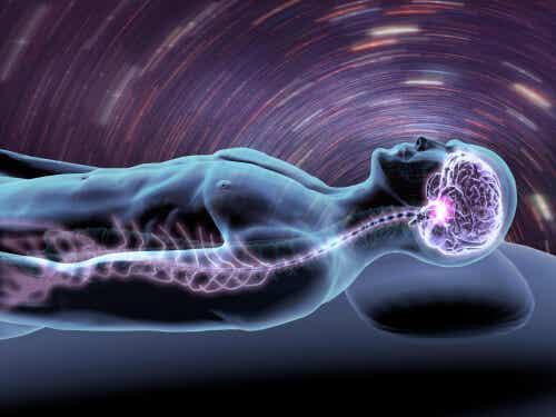 Cervello durante il sonno.