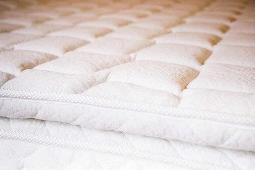 Materassi e cuscini.