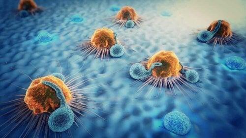 Origine delle metastasi cellulare.