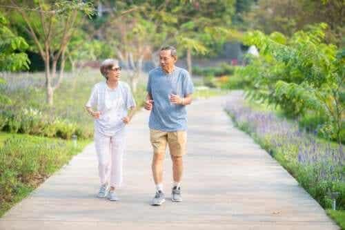 Programma di allenamento per anziani