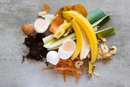 Rifiuti organici per il compostaggio.