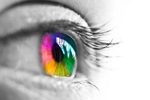 Percezione dei colori e occhio umano
