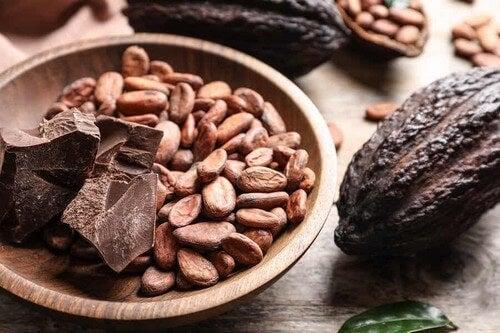 Fava di cacao e semi.