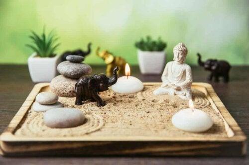 Giardino zen in miniatura.