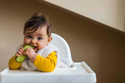 Cetrioli nella dieta del neonato: quando e come introdurli?