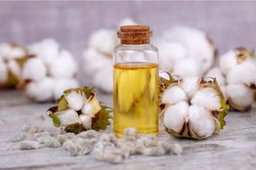 Olio di semi di cotone: usi, benefici e rischi