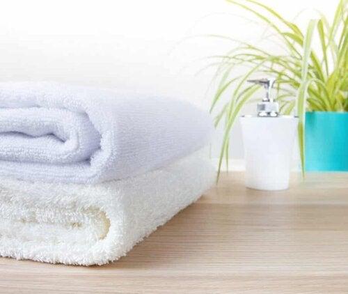 Piante e asciugamani in bagno.
