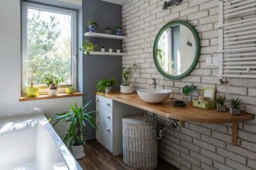 Arredare il bagno con le piante: 7 idee