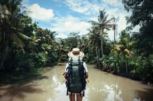 Viaggio ai tropici: tutte le regole per godersi una meta da sogno