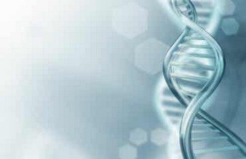 Tutto quello che c'è da sapere sul DNA